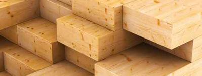 Holz & Bau